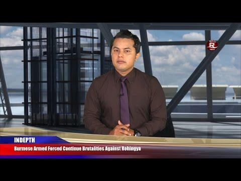 Rohingya Daily News 01 November 2016