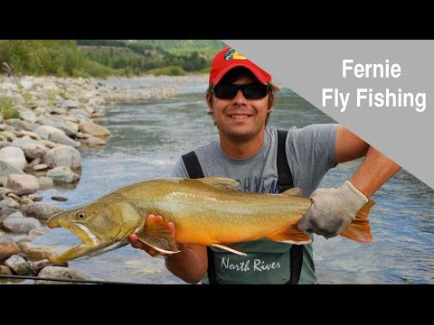 Fly Fishing in Fernie, British Columbia