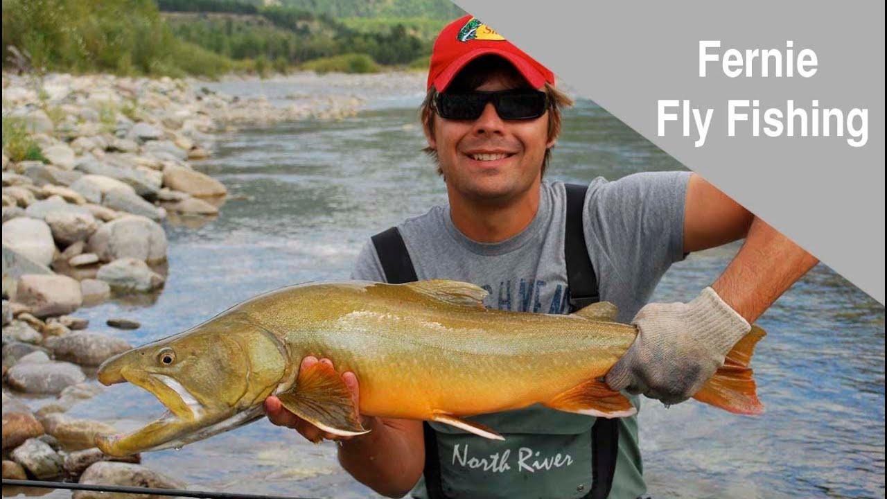 Fly fishing in fernie british columbia youtube for British columbia fishing license