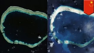 South China Sea dispute: China builds third airstrip at Mischief Reef - TomoNews