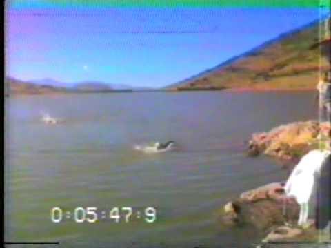 """triatlon """"Maracana 1987"""" Oaxaca Parte 1/3"""