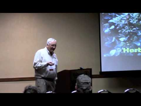SOYBEAN: Conventional, Specialty, Public RR1 In The Age Of Palmer Amaranth