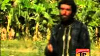 Balochi Video Song. KHAND ME LILA. AL-Mehmood Baloch Mob Taunsa..3gp