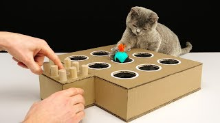 DIY Cat Toy Whack-A-Mole from Cardboard