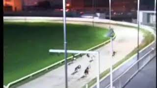 IGB - The Upcoming Sweepstakes Sprint 14/09/2018 Race 3 - Clonmel