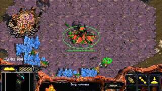 TUTORIAL: Zerg v Terran Basics (Part 1 of 2)