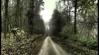 Peter Heppner - Alleinsein (Paul van Dyk Remix)