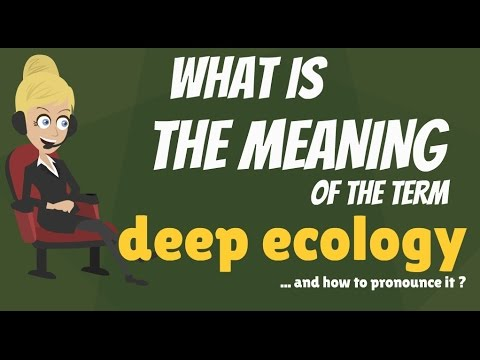 What is DEEP ECOLOGY? What does DEEP ECOLOGY mean? DEEP ECOLOGY meaning, definition & explanation
