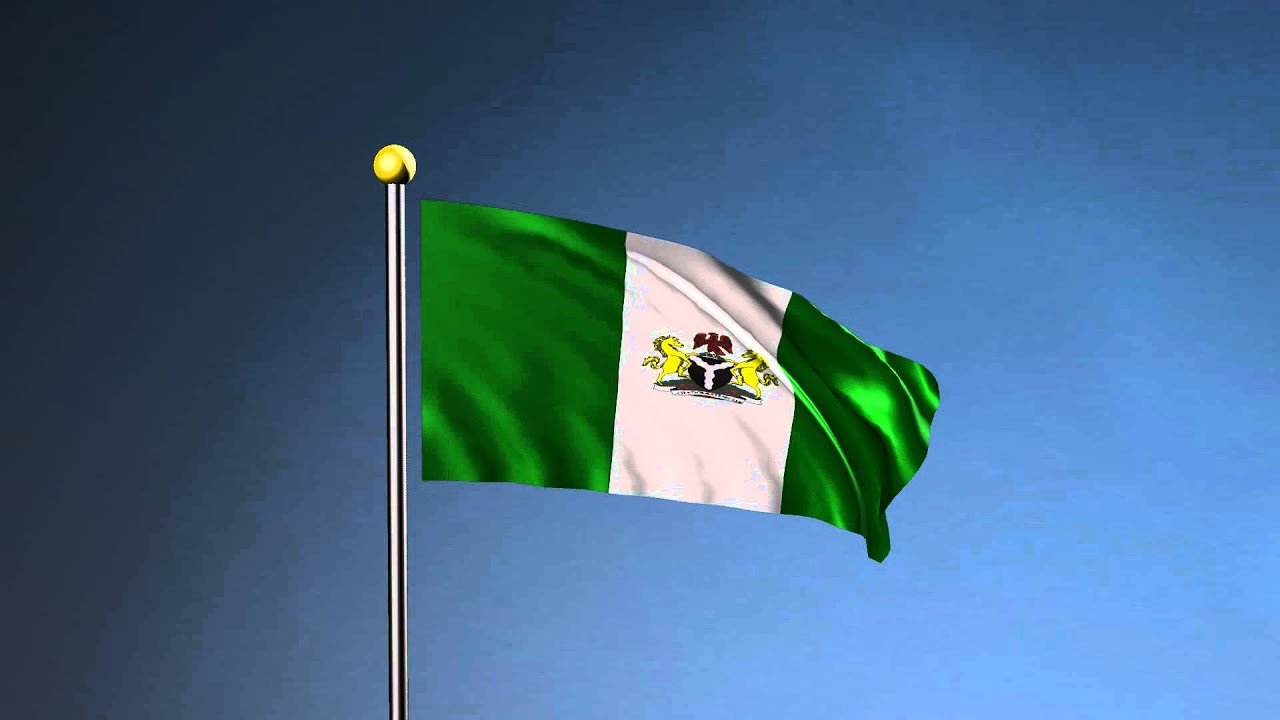 Image result for Nigerian Flag