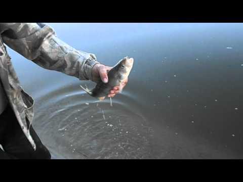 рыбалка в районе серафимович