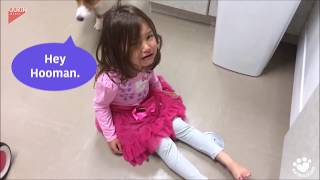 Doggy cuddles make girl's tantrum melt away