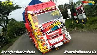 TAWAKAL INDONESIA#CCTVJEMBER2MBOIS #TAWAKALINDONESIA