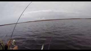 Рыбалка в глубине Кольского Полуострова