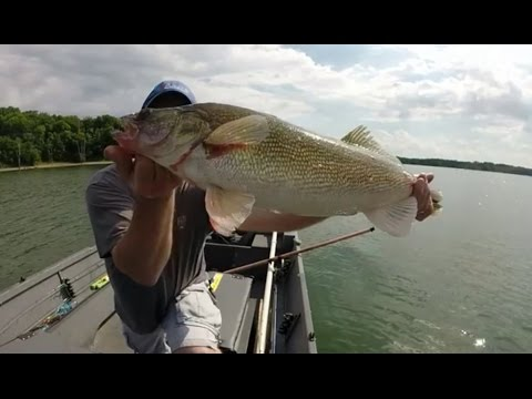 Big Walleye In Missouri USA Smithville Lake Swinging For The Fence