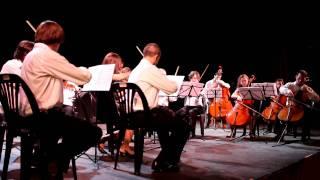 Edward Elgar - Amadeus - Serenata para cuerdas Op. 20 2do mov.
