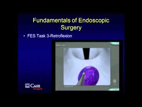 PG Course: Fundamentals of Endoscopic Surgery (FES) - Hands-on Modules