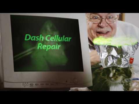 Cell Phone Repair Cat. Answering Cat