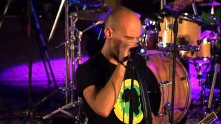 Tree 63 Live in Potchefstroom 2007