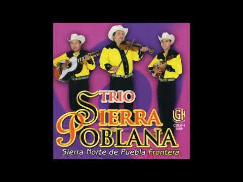 Trio Sierra Poblana - Sierra Norte de Pueble Frontera (Disco Completo)