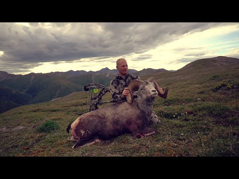 Stone Sheep Hunt in British Columbia: Marathon of Dreams