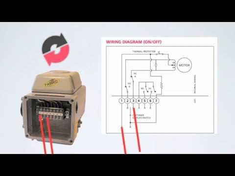 wiring instructions for k series 120v ac electric actuator youtube rh youtube com