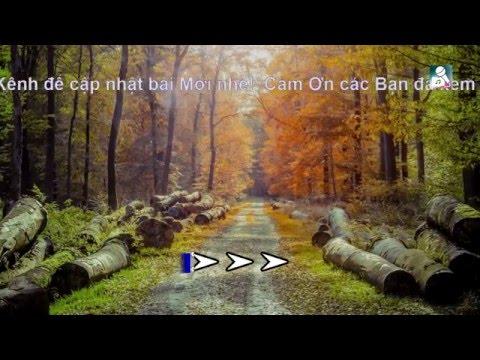 Karaoke Em nhớ anh vô cùng-Hồ Quỳnh Hương [ Beat Chuẩn ]