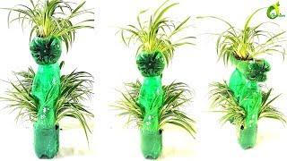 ❤❤plastic bottle planter ideas/ unique/ bottle garden //ORGANIC GARDEN❤❤