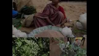 Medicinal Rice P5 Formulations for Dumasia Overdose: Pankaj Oudhia