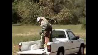 Protection K9 Training Video By Robert Huffmon ~ Waggin' Tails - Canine Solutions- Red Bluff Ca