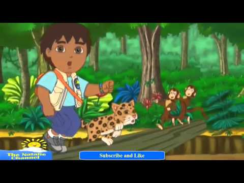 Go Diego Go Theme Song thumbnail