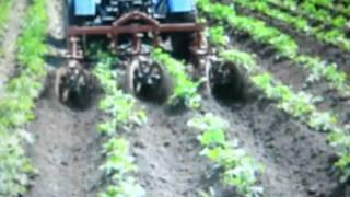 Культиватор межрядной оброботки картофеля.avi(, 2011-10-25T12:07:01.000Z)