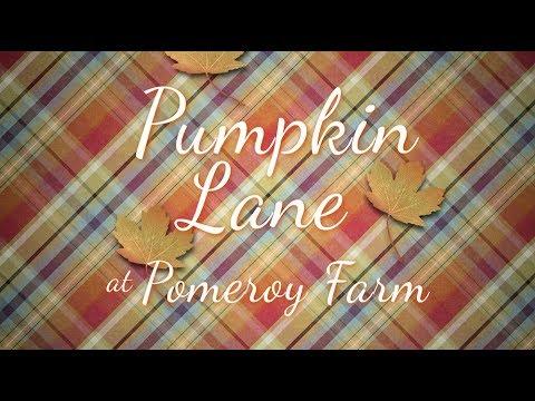 Pumpkin Lane at Pomeroy Farm
