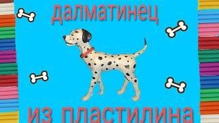Собака из пластилина. Далматинец
