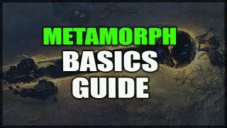 PATH of EXILE: Metamorph Basic Mechanics Guide - How to Not Pickup One Million Organs Needlessly