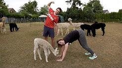 Deutschland Was Geht #33 | Alpaka-Yoga Willich mit FABIAN KÖSTER