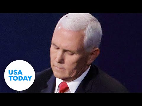 A fly stole the show resting on VP Mike Pence's head at the debate | USA TODAY
