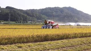 6 row combine harvester 2