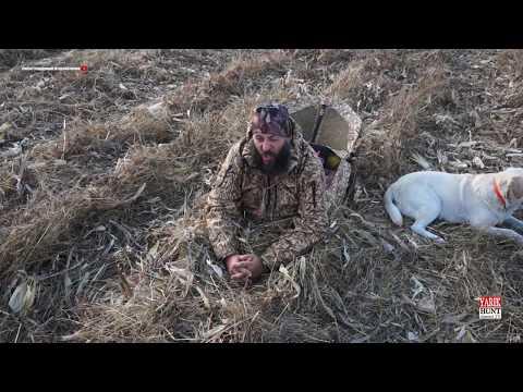 Мое Снаряжение для охоты на гуся на полях Краснодарского края и Адыгее