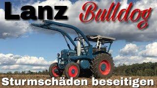 Lanz Bulldog Sturmschäden beseitigen [D4016]