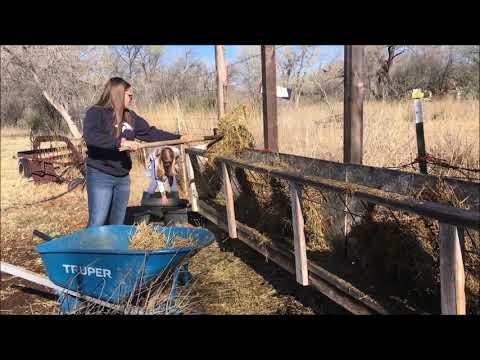 Introduction to Camino de Paz Montessori Secondary School and Farm.