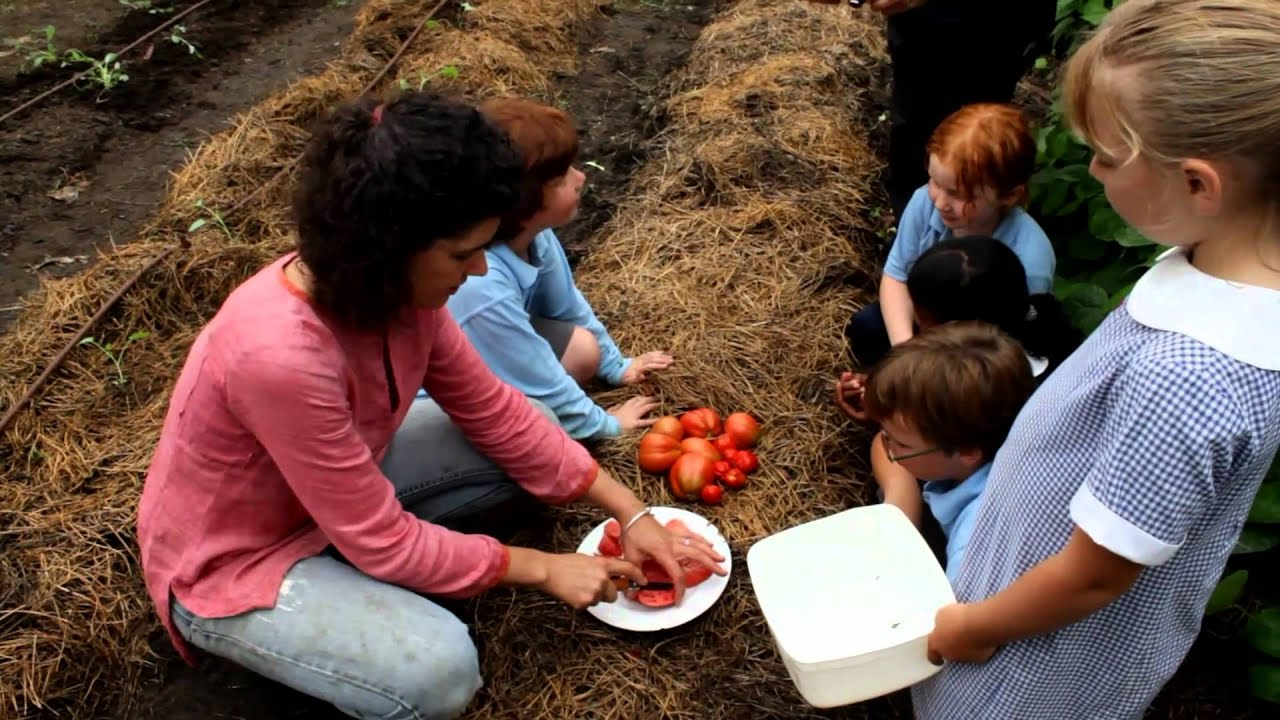 The Stephanie Alexander Kitchen Garden National Program Lucy Turner Berrima Public School Garden Youtube