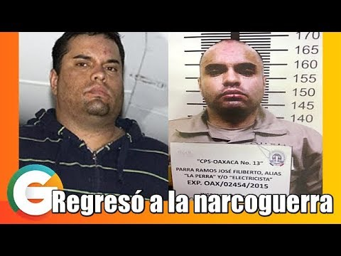 """""""La Perra"""" regresó a la Narcoguerra #Tijuana"""