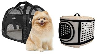 5 Best Hard Sided Little Dog Carriers - Top 5 Hard Sided Little Dog Carriers Reviews