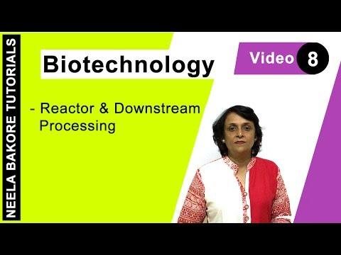 Biotechnology - Bioreactors & Downstream Processing