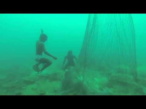 Cuttlefish catching in Pearl fishery coast
