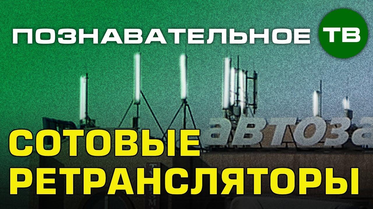 Заметки: Сотовые ретрансляторы в Покрове (Познавательное ТВ, Артём Войтенков)