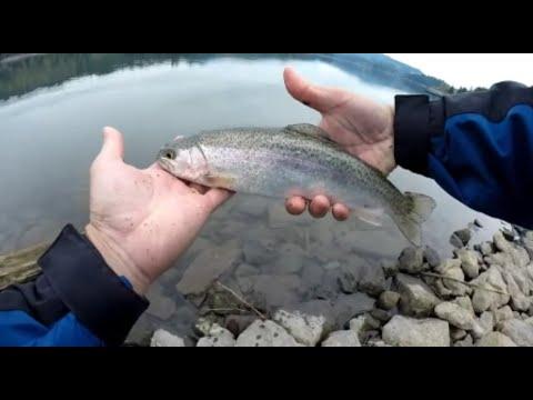 oregon trout fishing foster reservoir (second trip)