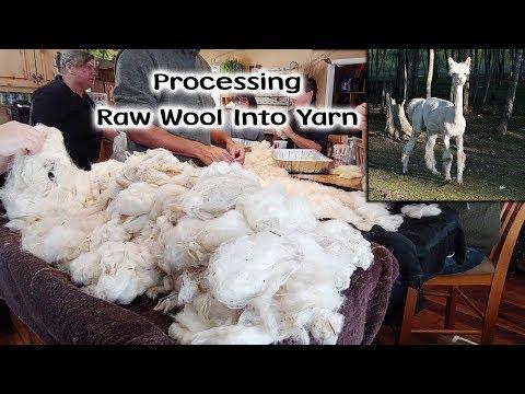 Processing Raw Wool Into Yarn