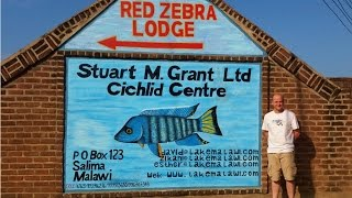 Fish House Tour At Stuart M Grant Ltd - Red Zebra Tours Lake Malawi