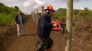 Best Agricultural Fencing Tips